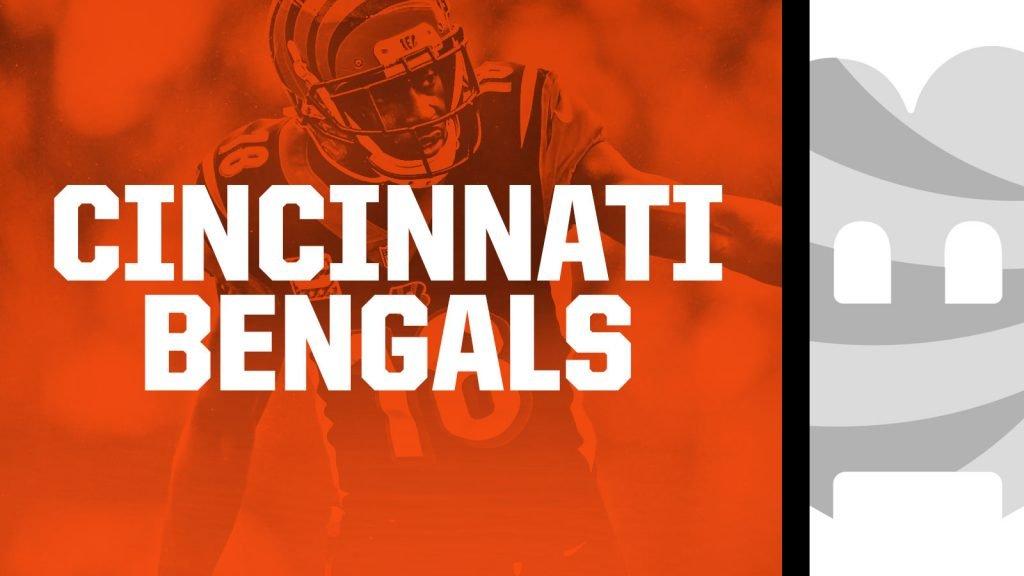 Discounted Cincinnati Bengals Tickets