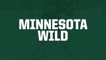 Cheap Minnesota Wild Tickets